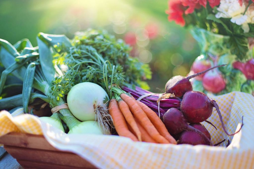 Image of healthy vegetables for what to eat with probiotics